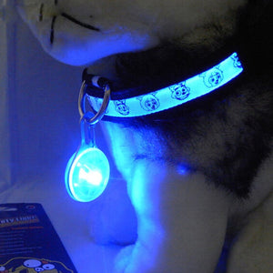 Pet Night Safety LED Flashlight Collar - Pet Shop Boys and Girls