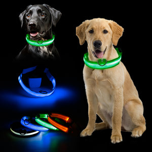 Safety Glowing Gem Light LED Pet  Collar - Pet Shop Boys and Girls