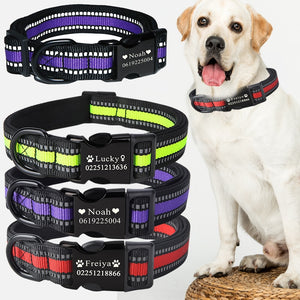 High Quality Dog Personalized Collar - Pet Shop Boys and Girls