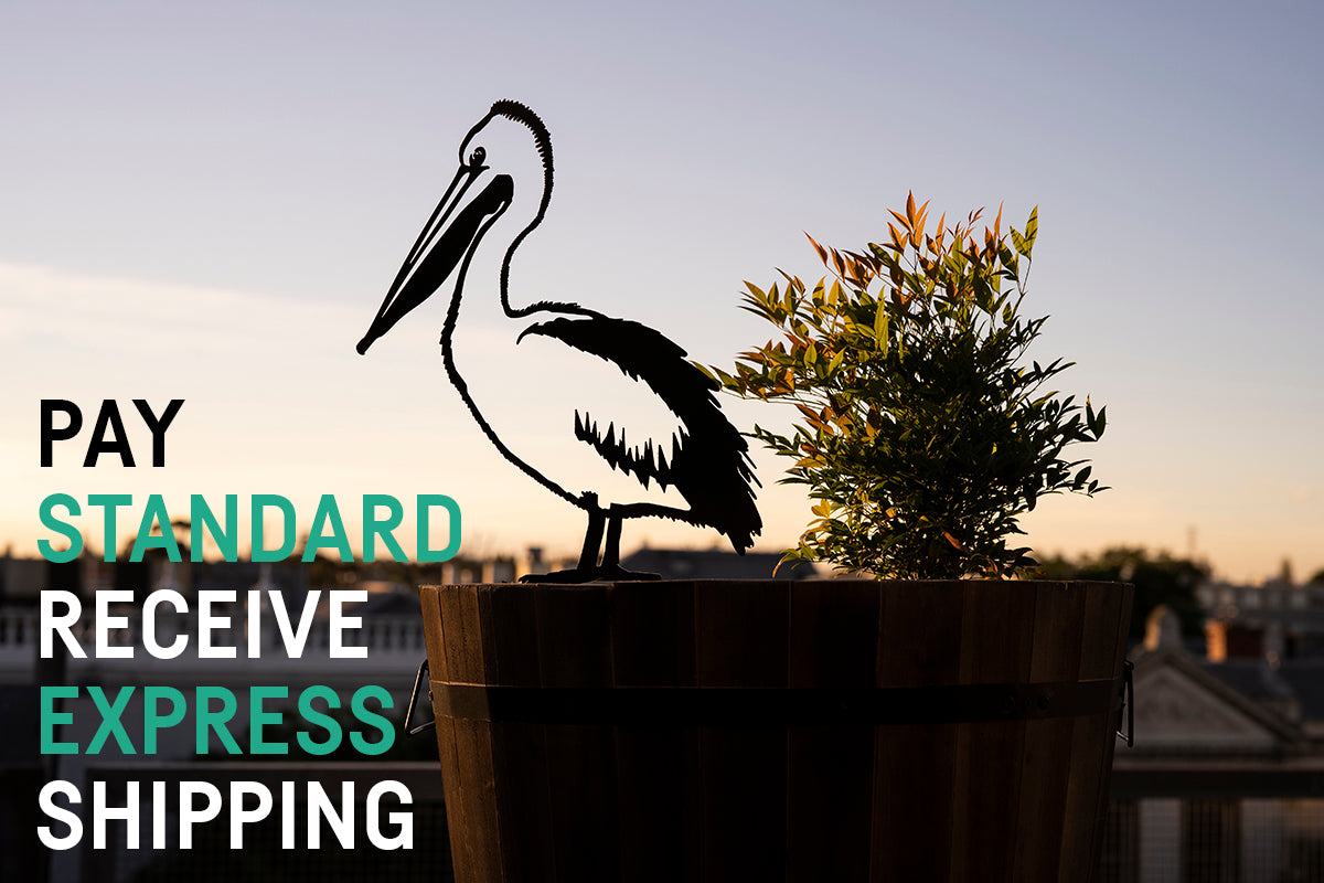 Pay standard receive EXPRESS shipping