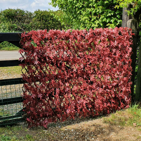 Artificial Red Trellis Screen