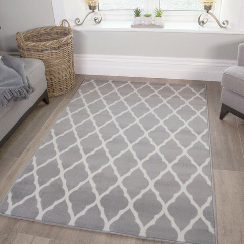 Neutral Trellis Silver Grey Living Room Rug