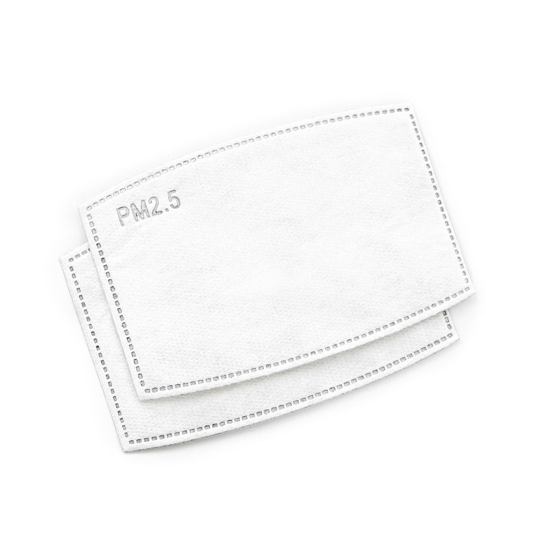 PM2.5 FILTER FOR FACE MASKS