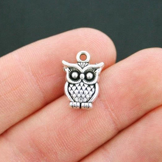 10 Owl Antique Silver Tone Charms - SC2292