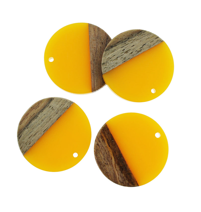 2 Round Natural Wood and Resin Charms - Z1028
