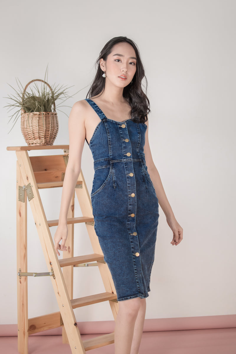 Alexandria Denim Midi Dress