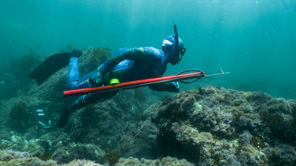 Intro to Freediving and Spearfishing!