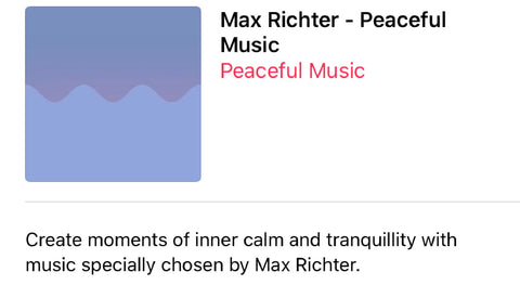 Max Richter Peaceful Music