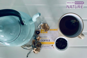 Tru Mood Zest | Ginger Lemon Organic Coffee Leaf Tea w/Psilocybin Cubensis Mushroom