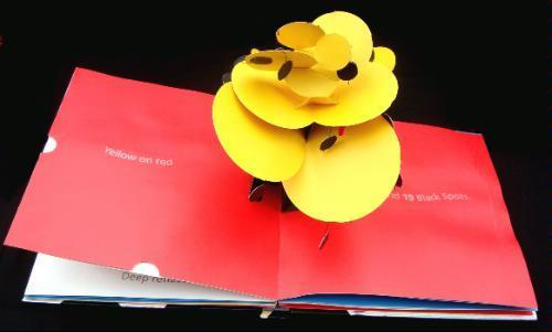 Pop-Up Book: 600 Black Spots