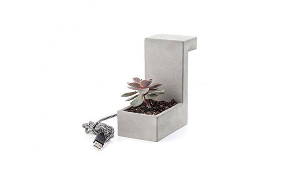 Concrete Desk Lamp/Planter