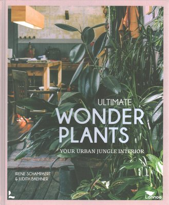 Ultimate Wonder Plants: Your Urban Jungle