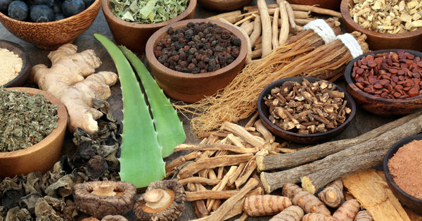 What Are Adaptogens And What Do They Do?