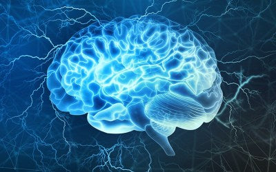 Nootropic Alpha Lipoic Boosts Brain Protection