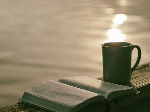 Book and coffee mug by the water
