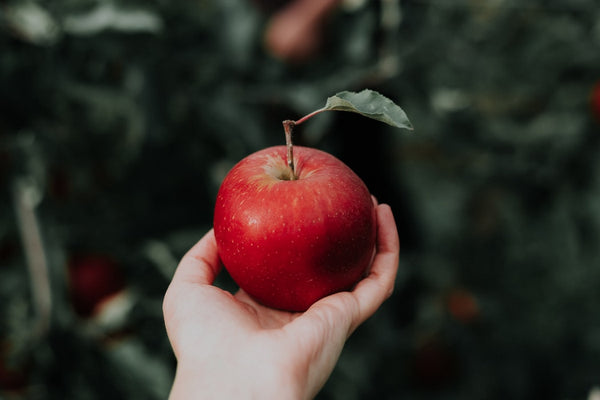 apples are a dopamine boosting fruit