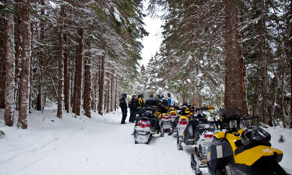 TOP 10 NEWFOUNDLAND SNOWMOBILING DESTINATIONS