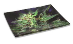 Blue Dream Strain Shatterproof Glass Tray