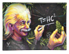 T=HC2 Einstein's Higher Education Blackboard Shatterproof Glass Tray