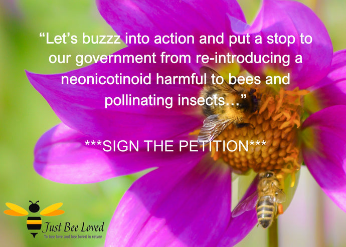 Buzz Into Action - Save Our Bees & Pollinators