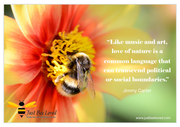 Bee and Nature Quotes Jimmy Carter