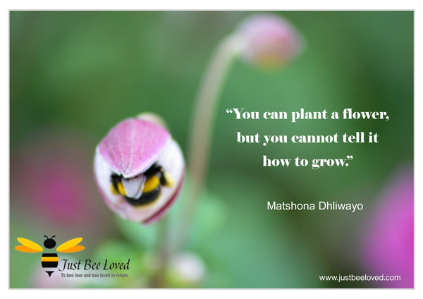 Bee and Nature Quotes Matshona Dhliwayo