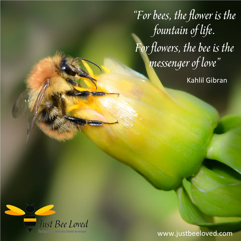 Bees Messenger of Love Quote by Kahlil Gibran