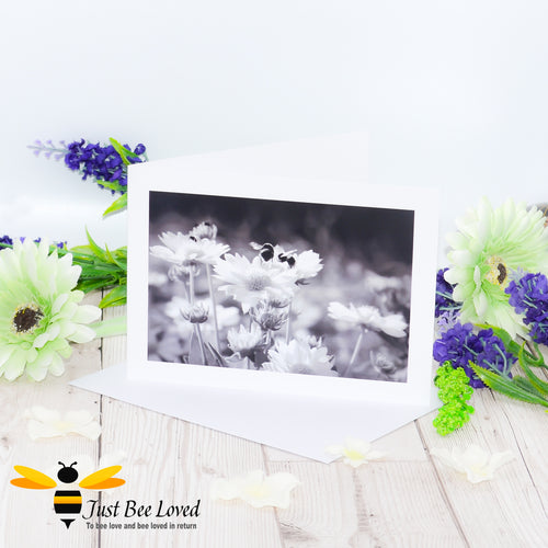 Daisy Dancing Bumblebees Black and White Blank Photographic Blank Greeting Card image by Landscape & Nature Photographer Yasmin Flemming