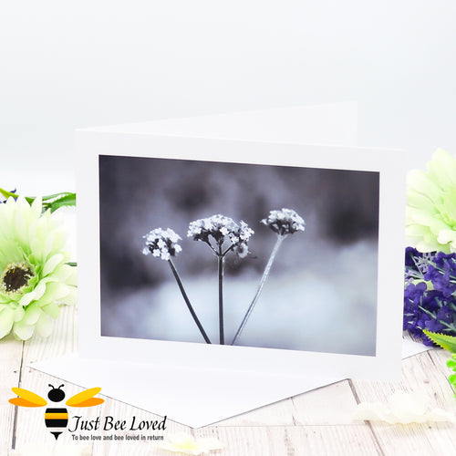 Bee on a Misty Morning Photographic Black and White Blank Greeting Card image by Landscape & Nature Photographer Yasmin Flemming