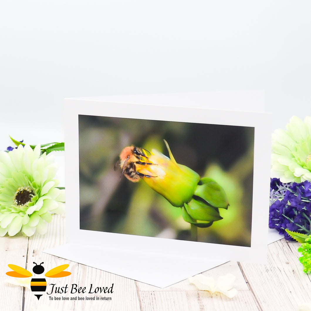 Bumblebee Drinking Nectar Photographic Blank Greeting Card image by Landscape & Nature Photographer Yasmin Flemming
