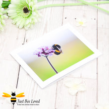 Load image into Gallery viewer, Bumblebee and Verbena Flower Photographic Blank Greeting Card image by Landscape & Nature Photographer Yasmin Flemming