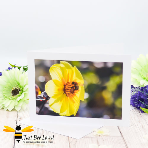 Bumblebee and Yellow Dahlia Photographic Blank Greeting Card image by Landscape & Nature Photographer Yasmin Flemming