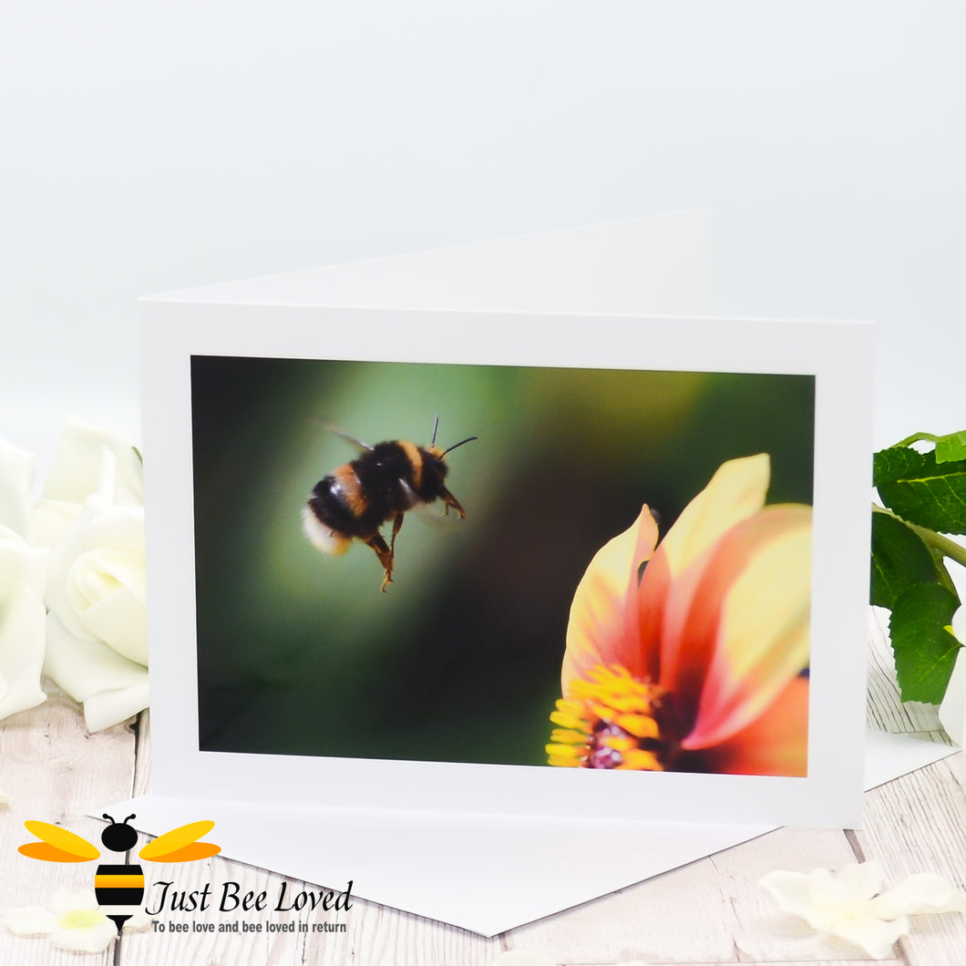 Flying Bumblebee Blank Photographic Greeting Card by Landscape & Nature Photographer Yasmin Flemming
