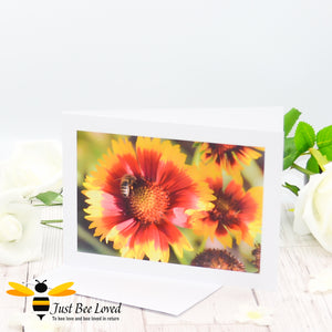 Honey bee Foraging Photographic Blank Greeting Card image by Landscape & Nature Photographer Yasmin Flemming