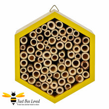 Load image into Gallery viewer, Hexagon wooden bee house for garden certified by the Forest Sustainability Council
