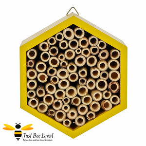 Hexagon wooden bee house for garden certified by the Forest Sustainability Council