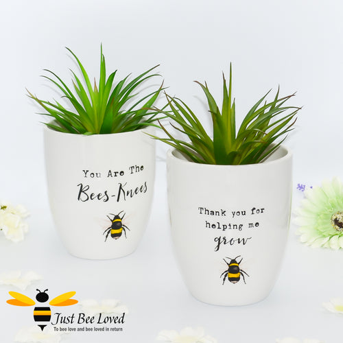 ivory  ceramic indoor plant pots featuring a bumblebee illustration and thoughtful text
