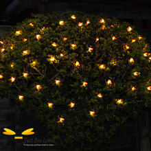 Load image into Gallery viewer, Garden Honey Bee Solar Lights 10 metres 50 led lights on tree