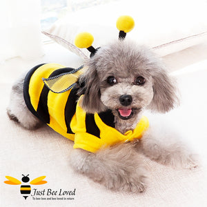 Bumblebee fleece coat fancy dress costume for dogs and puppies