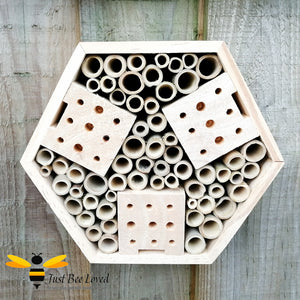 Wooden hexagon bee and insect hotel