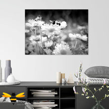 Load image into Gallery viewer, Just Bee Loved Home Decor Large Canvas of Daisy Dancing Bumblebees Black and white Wall Decor by Landscape & Nature Photographer Yasmin Flemming