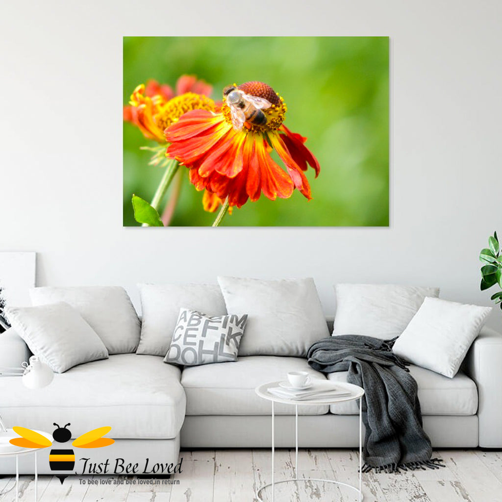 Just Bee Loved Home Decor Large Wall Art Canvas with Honeybee on Helenium flower print by landscape & nature photographer Yasmin Flemming