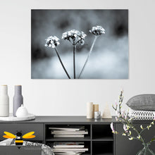 Load image into Gallery viewer, Just Bee Loved Home Decor Large Canvas of Bumblebee Black and white Wall Decor by Landscape & Nature Photographer Yasmin Flemming