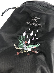 Arcteryx Archaeopteryx Day Pack