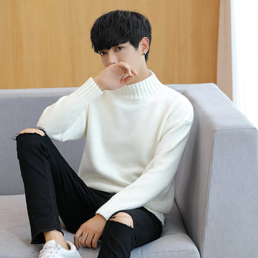Turtleneck Slim Fit Pullover Solid Knitted Sweater