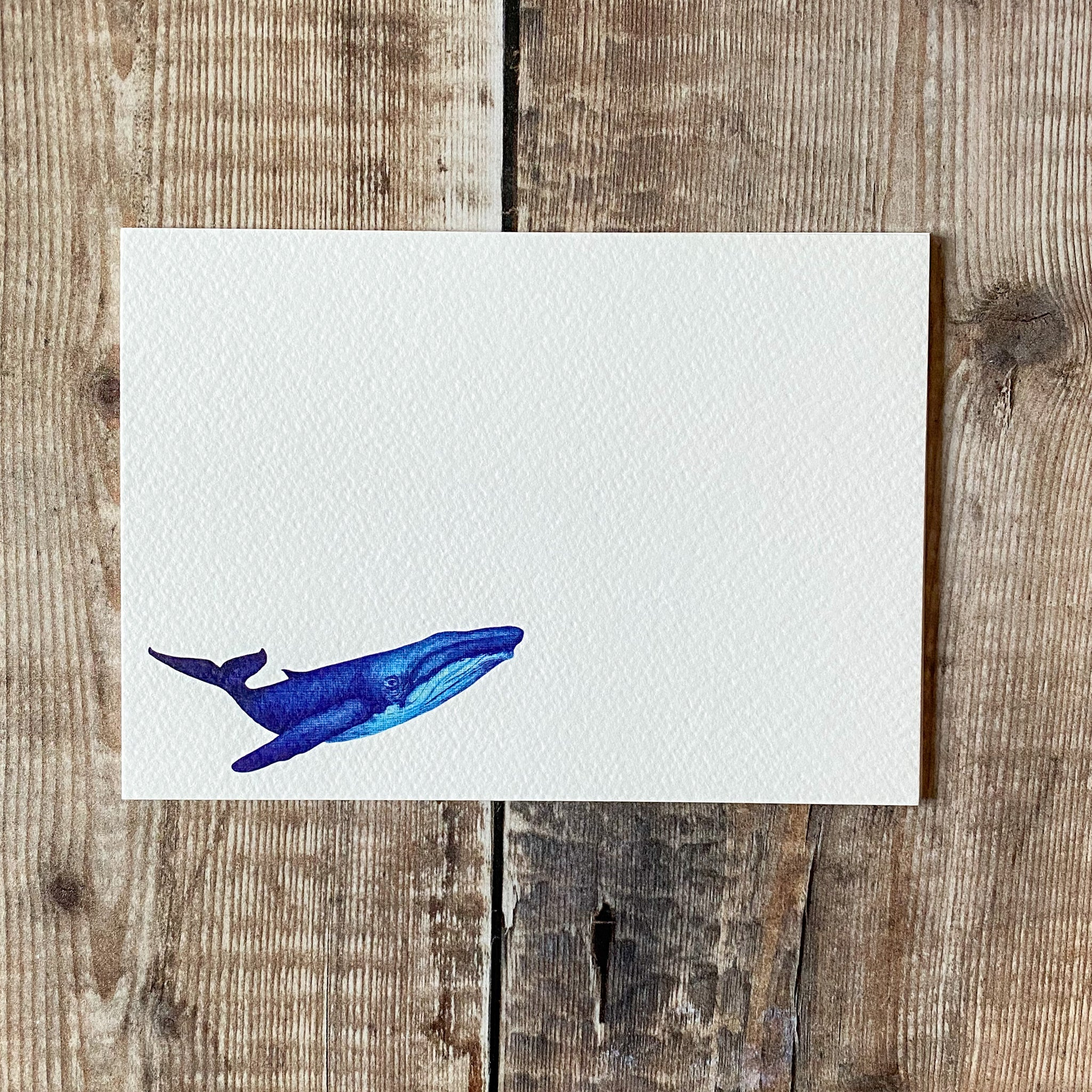 Whale notecards