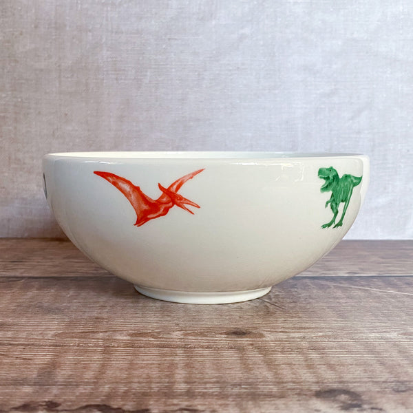 Dinosaur Stirling Bowl