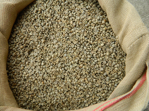 green coffee beans from Brazil Daterra Santa Colomba d