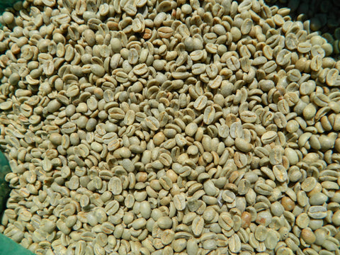 Colombia Geisha VS unroasted coffee beans e