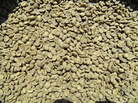 Organic Decaf Timor green coffee beans FF
